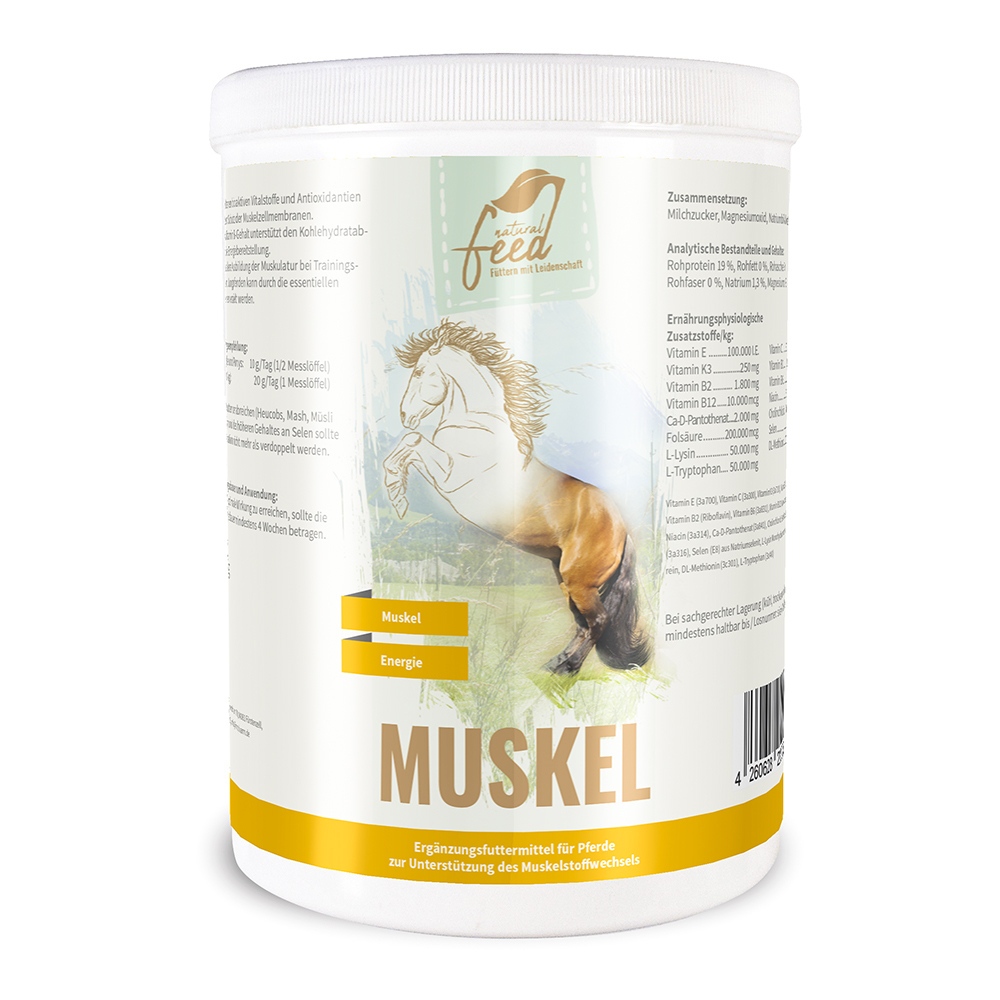 Dose-Muskelaufbau-Pferd-1kg