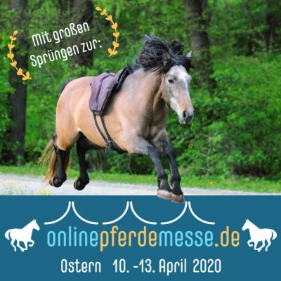 Onlinepferdemesse_web